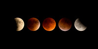"2015 ""Super Blood Moon"" Lunar Eclipse"
