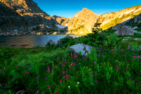 Ouzel Peak and the wildflowers of Bluebird Lake